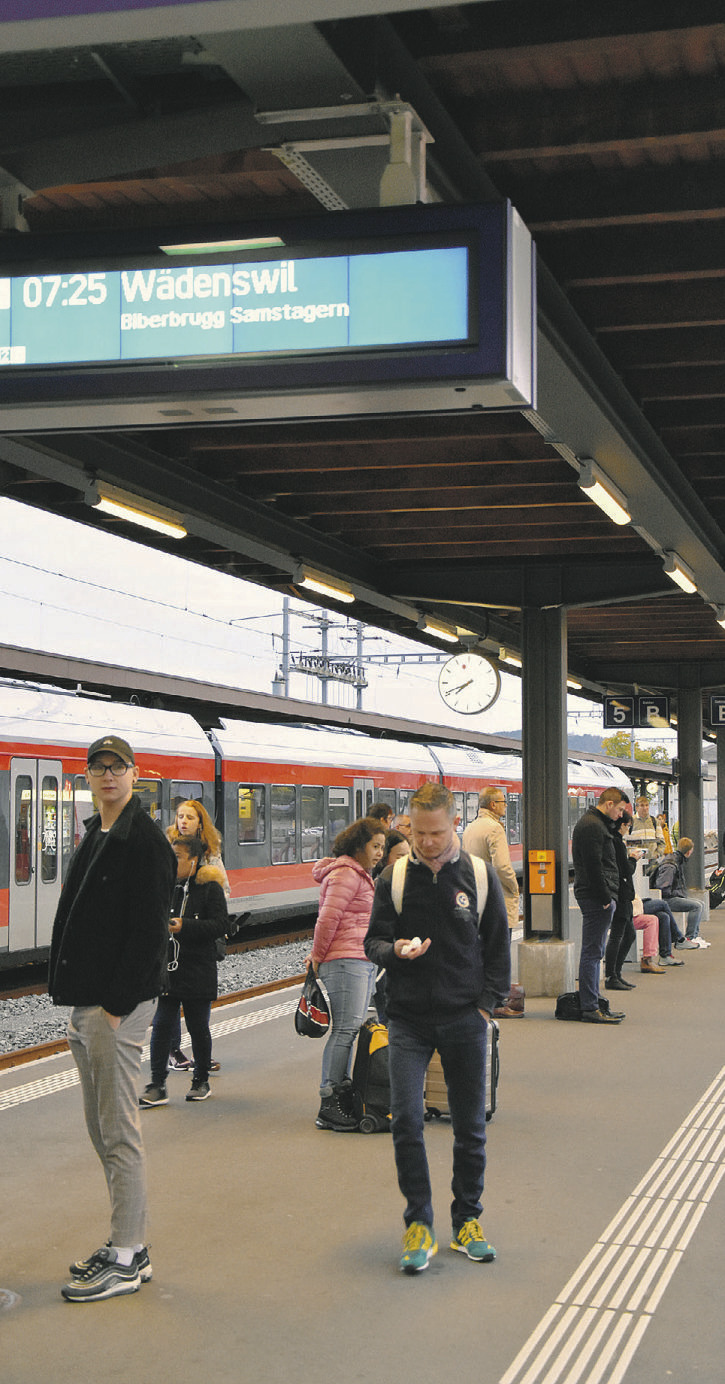 Baum stürzt auf Fahrleitung,  Bahnverkehr unterbrochen