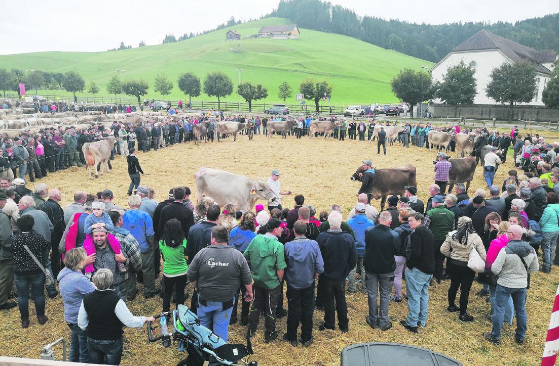 serversorgung wie auch die Brunnengenossenschaft Grossbach-  Dörfli