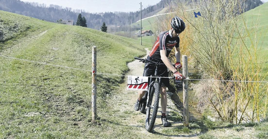 Zaunwimpel für noch mehr  Sicherheit auf den Alpen
