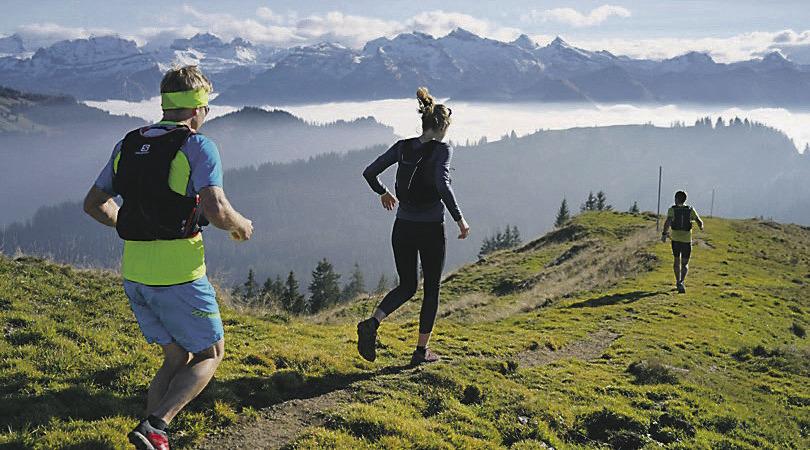 Verein sammelt Geld für  Trail-Run-Wegweiser