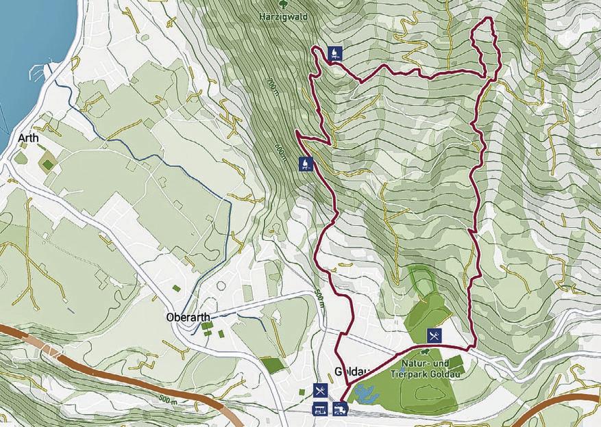 Zwei Wandertipps für das Goldauer Bergsturzgebiet