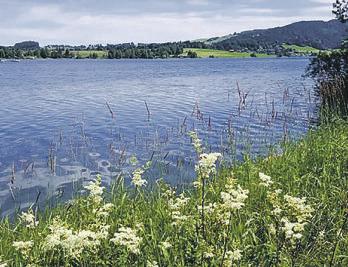 Der Kanton Schwyz zeigt mit dem  Impulsprogramm «Hopp Schwyz»
