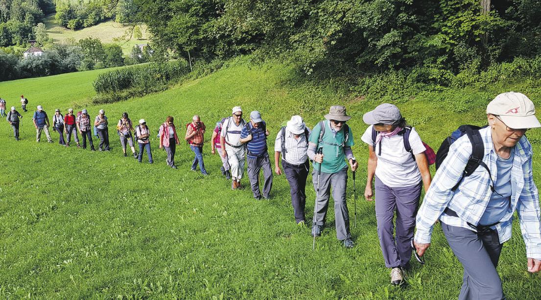 SAC-Senioren auf Wanderschaft in   den Freibergen