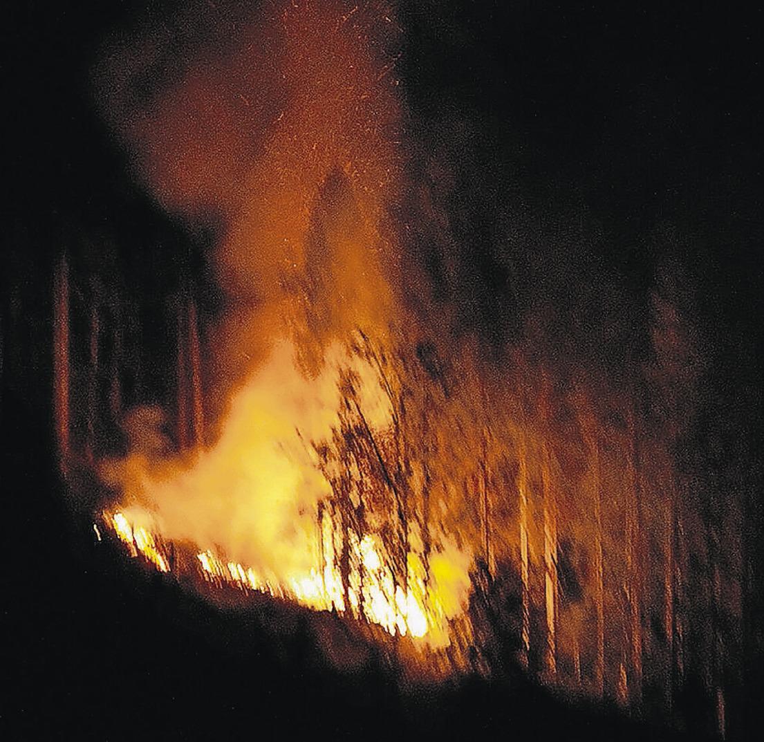 Böller explodiert am 1. August – zwei Schwerletzte in Alpthal