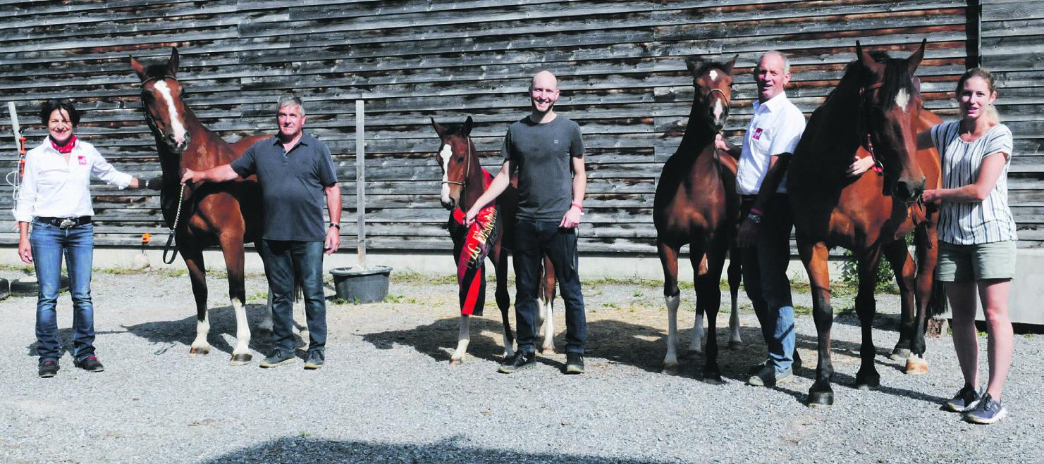 Ybriger Pferdezüchter räumten ab