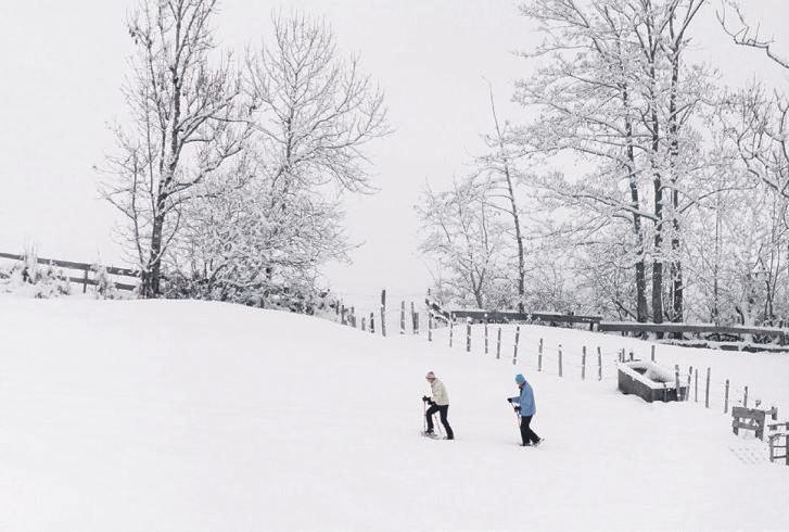 Schneeschuhtouren sind im Trend