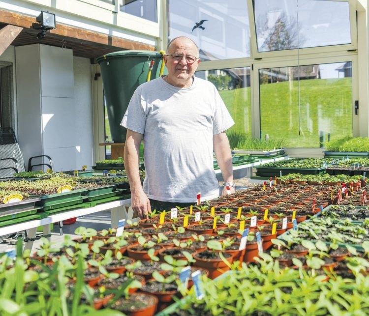 «Ich muss meinen Garten besonders gut schützen»
