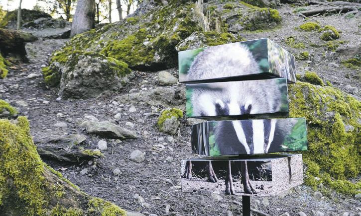 Futterraub im Tierpark –  neuer Rätselpfad