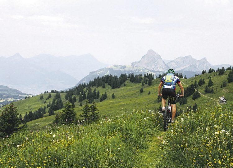 Immer mehr Bikes auf Wanderwegen