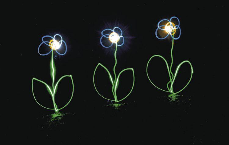 Malen mit Licht – eine  vielfältige Kunst
