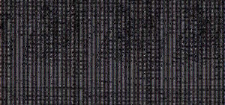 Fotografien mit der Camera obscura